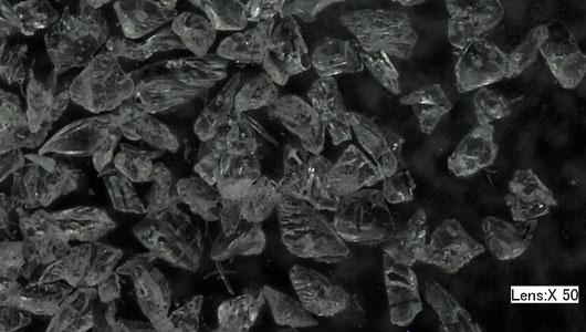 Wheat starch micro-abrasive 50x